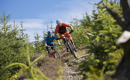 Private Mountain Bike tuition sessions
