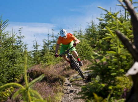 Mountain bike tuition course teaching enduro riding, trails and skills