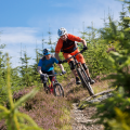 RIDELINES - Mountain Bike skills courses in the Tweed Valley.