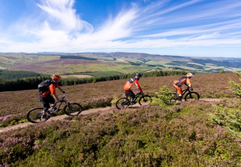Want to know where all the good stuff is? Our guided mountain bike rides are for you