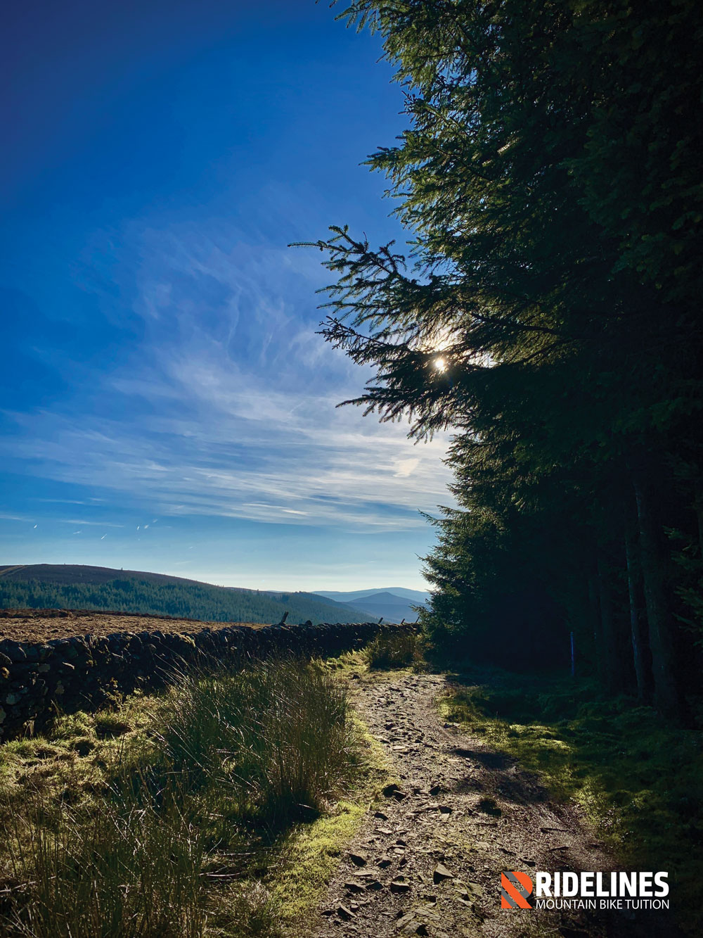 Hush Hush. Glentress has many secrets off the beaten track!