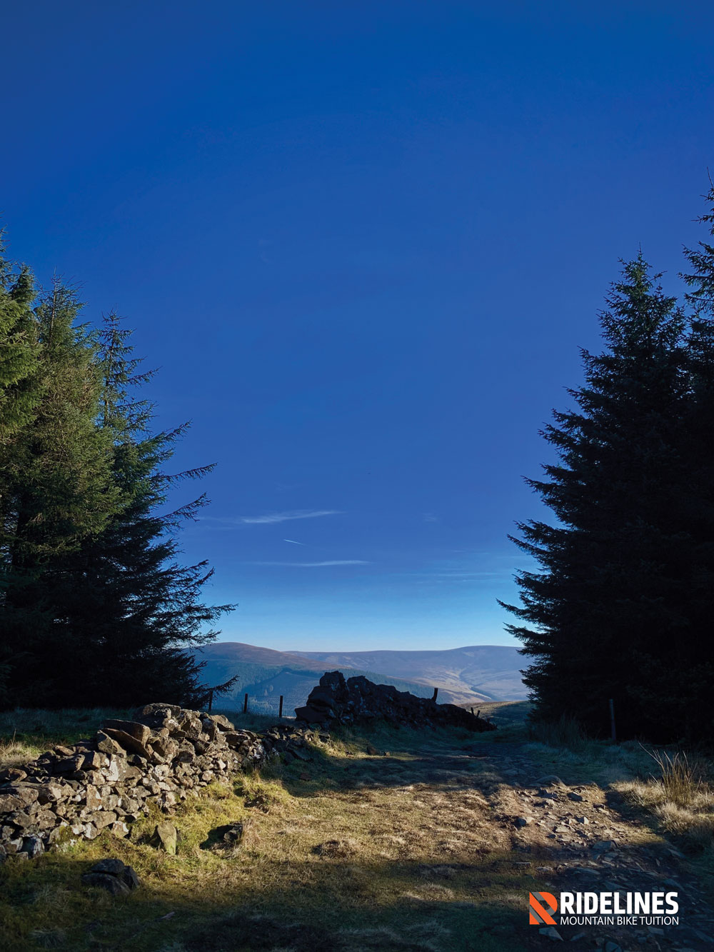 The Boundry Trail at Glentress is less trodden and a firm favourite of ours.