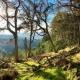 Ridelines: Glentress Spooky Woods Climb