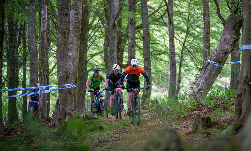 Ridelines at Glentress 7 2019